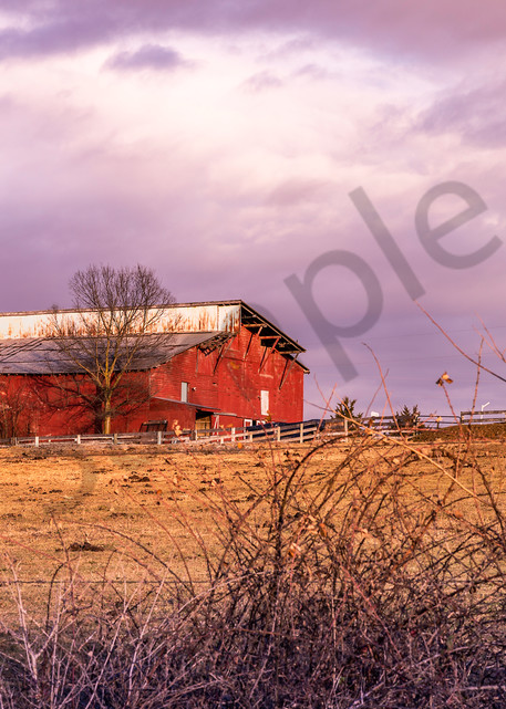 Pretty Little Barn | Susan J Photography Fine-Art Prints