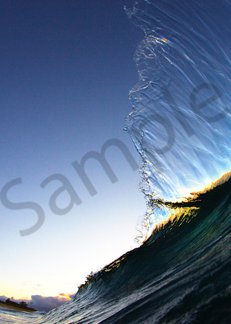 feather wave photography