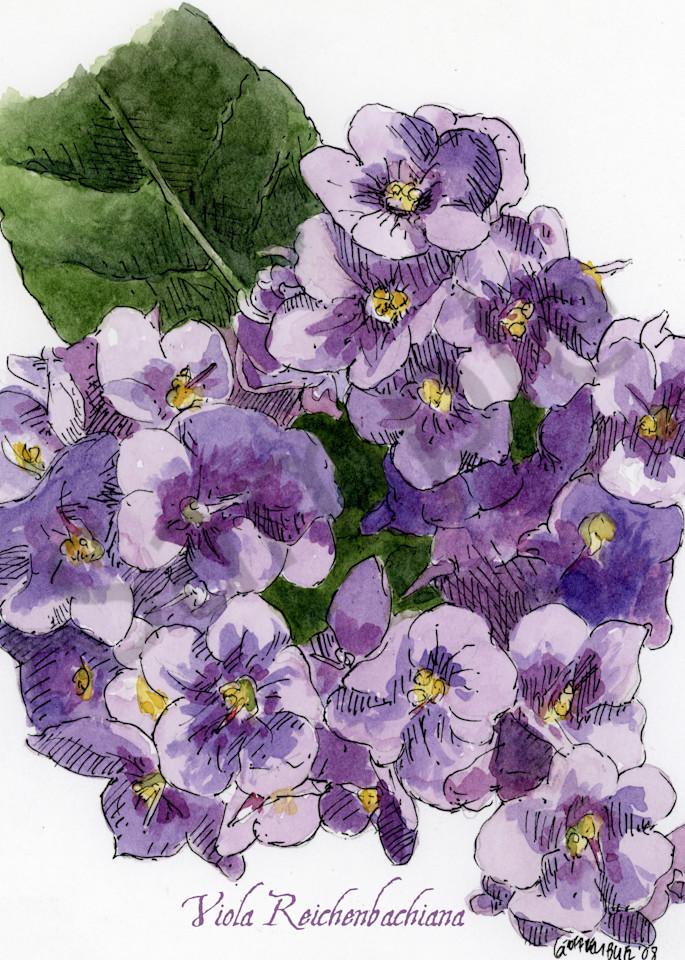 Feb Violet Art   Geoffrey Butz Art & Design Inc