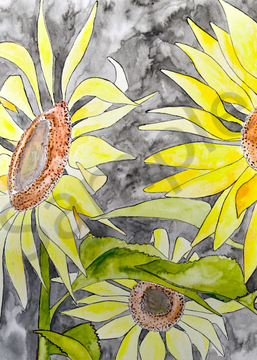 Sunflower Art | The Soap Gallery