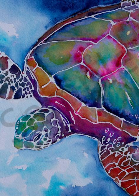 Dustin The Sea Turtle Art   Amy Tigner Art