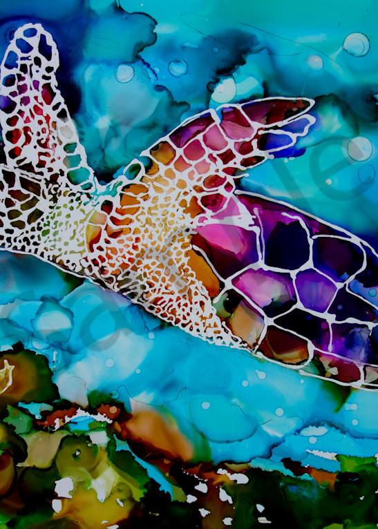 Sibyl the Sea Turtle