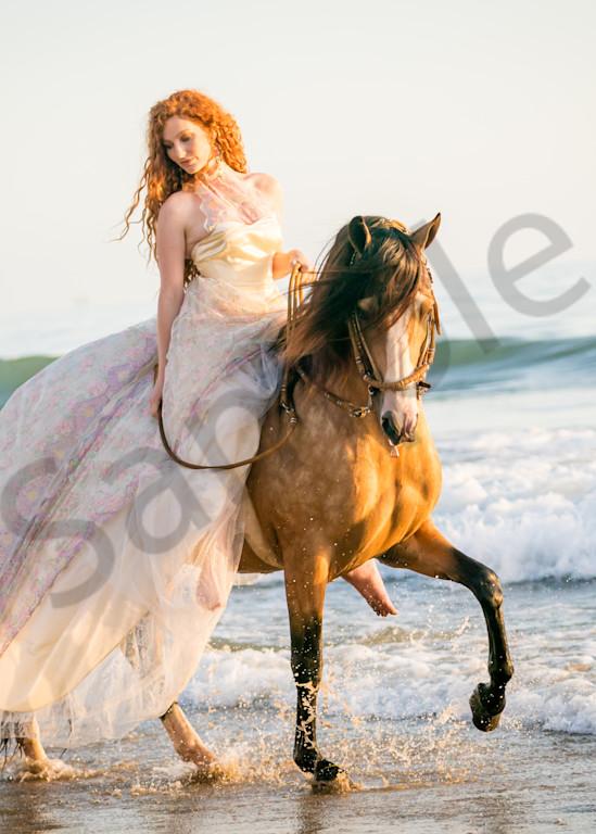 Sea Foam And Lace Photography Art   HoofPrintsFineArt