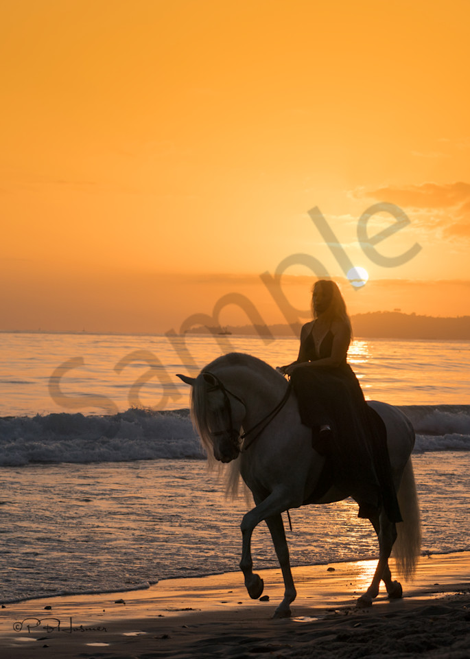 Sunset Ride On The Beach Photography Art | HoofPrintsFineArt
