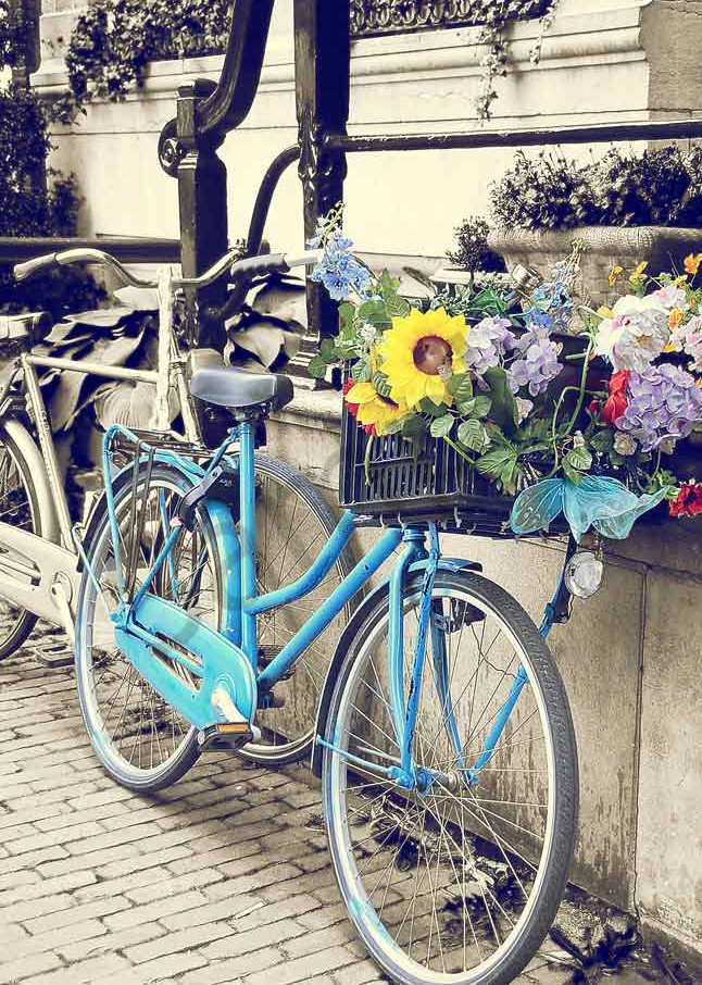 Blue bicycle with a wildflower basket photograph by Ivy Ho for sale as fine art.
