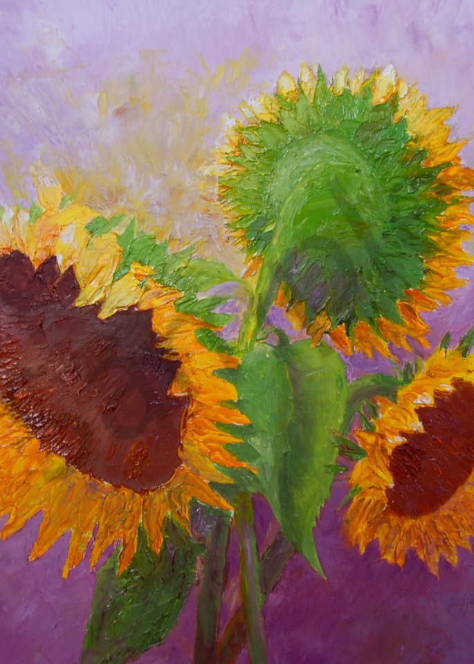 """Sunflower Trio"" by Judy Johnson   Prophetics Gallery"