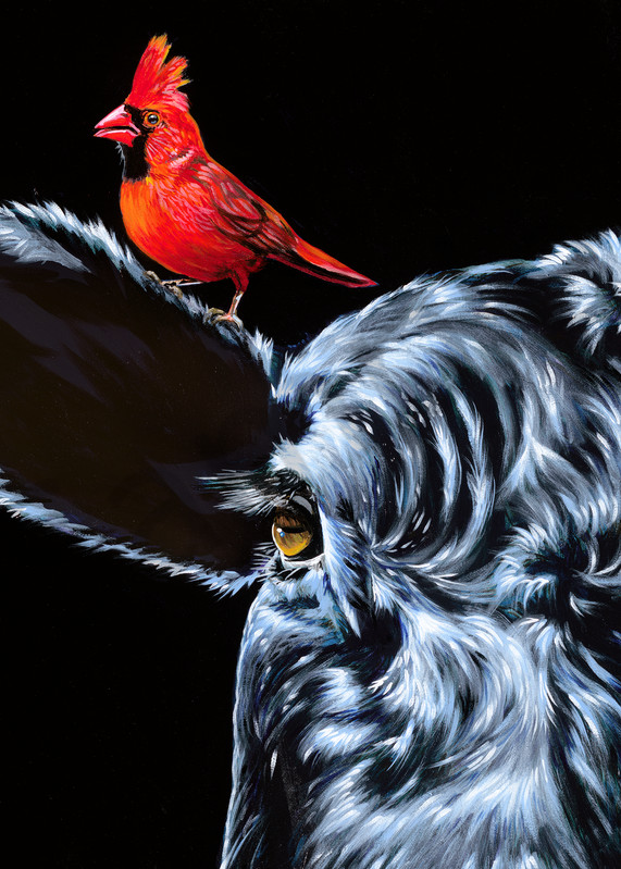 Original painting of a cardinal perched on the ear of a bull, available as art prints.