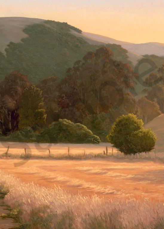Through The Fields Art | Terry Sauve Fine Art