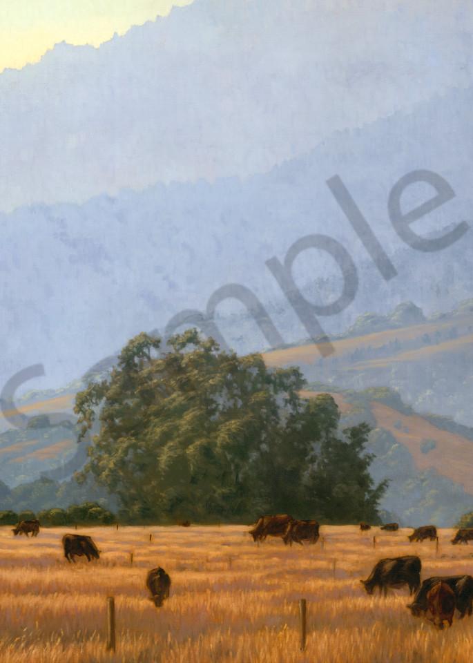 Evening Graze On The Mesa Art | Terry Sauve Fine Art