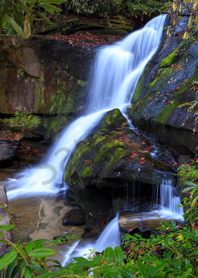 Waterfall Wall Art: Sinuous Cedar Rock Falls