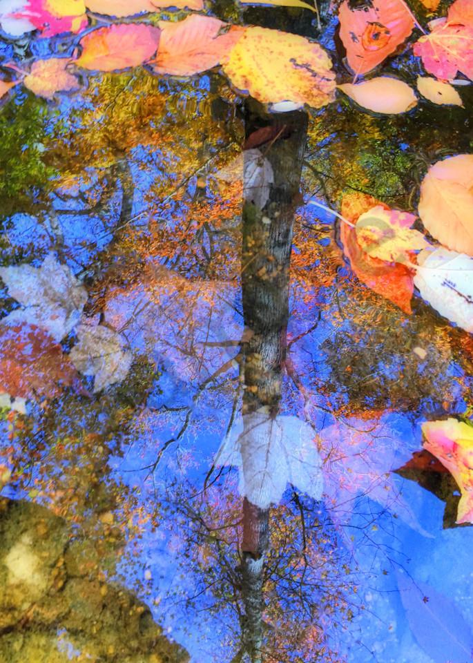 Autumn Watermark|Fine Art Photography by Todd Breitling|Landscape Photography|Todd Breitling Art|