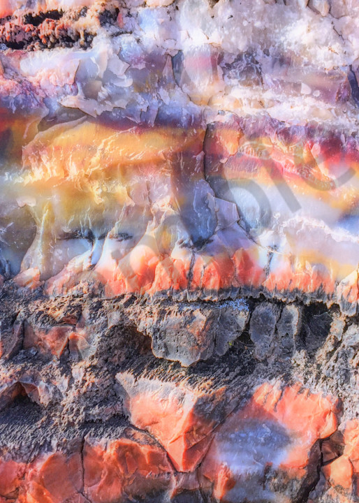 Petrified Wood Colors|Fine Art Photography by Todd Breitling|Landscape Photography|Todd Breitling Art