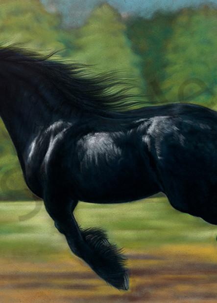 stockdell, horse 1, scan, 1/22/14, 3:31 PM, 16C, 7890x10295 (959+341), 150%, Repro 2.2 v2,  1/12 s, R119.3, G89.2, B100.2