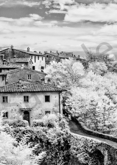 Il Paradiso Terrestre 8370 Photography Art | Bridget Karam Photography
