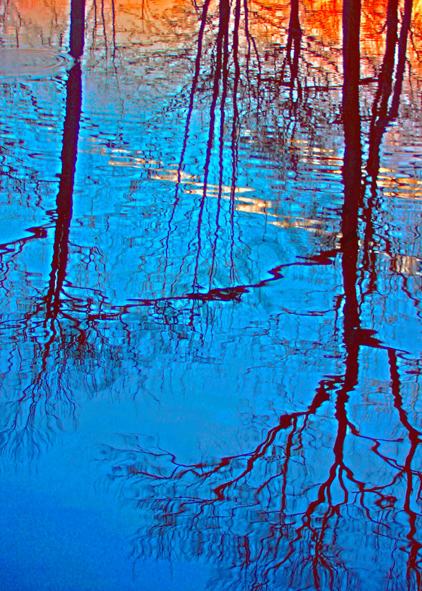 Spring Reflection|Fine Art Photography by Todd Breitling|Trees and Leaves|Todd Breitling Art|