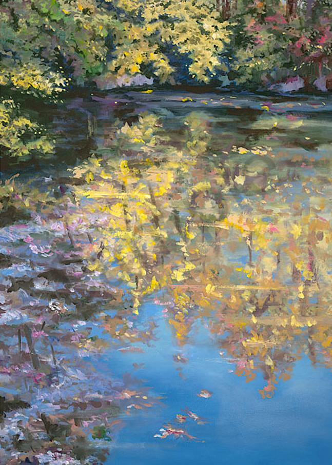 Trees Reflection Adams Scan