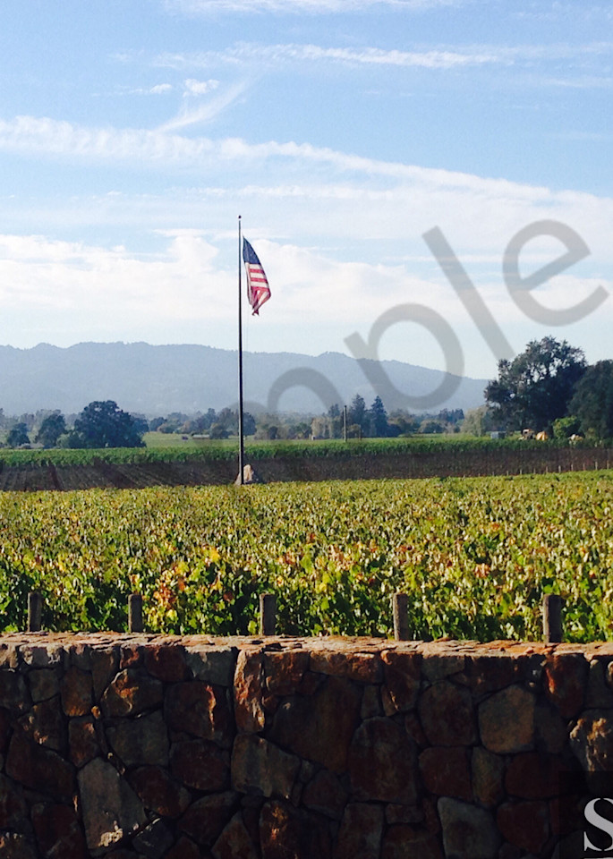 Wine Country Photography Art | slgparrish