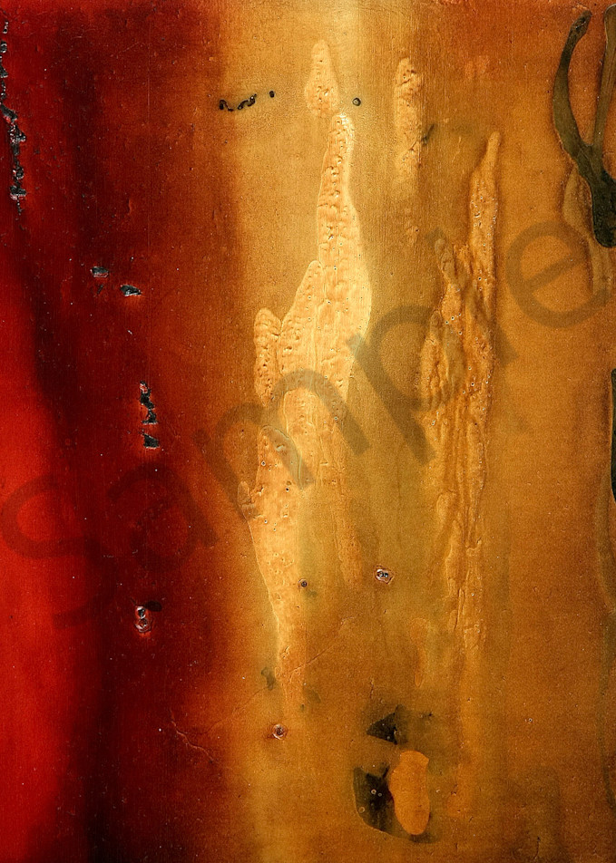 """Evening Prayer Series V"" by Julie Quinn   Prophetics Gallery"
