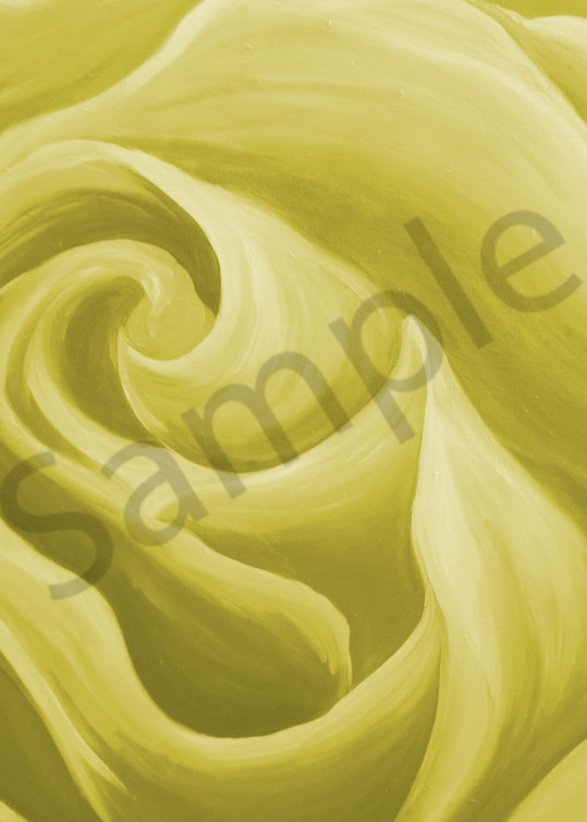 Daffodil Yellow Rose Art | Art By Dana