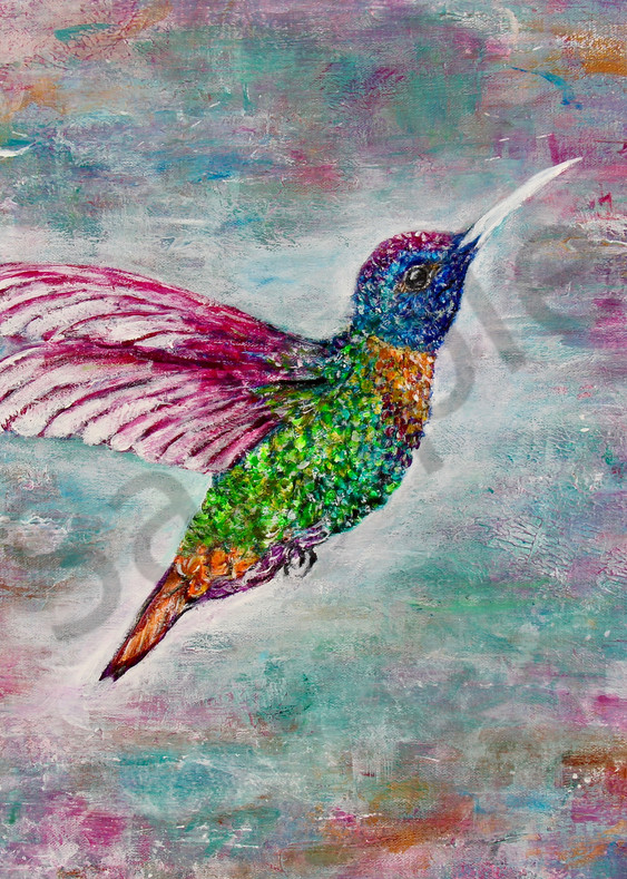 Humming Bird Art | Art By Dana