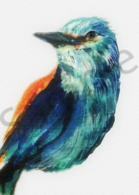 Pretty Bird Art | Art By Dana