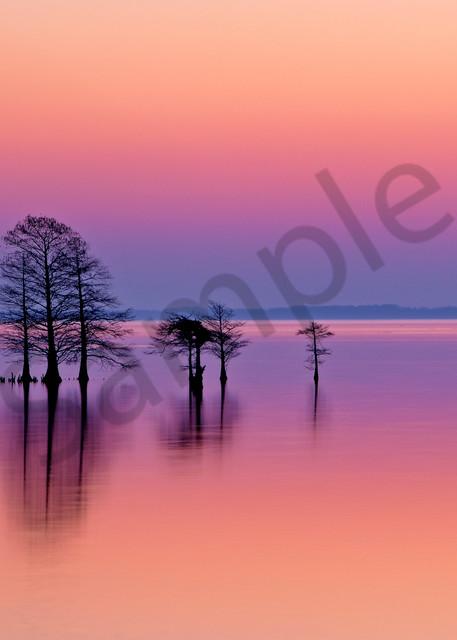 Lake Mattamuskeet NC | Robbie George Photography