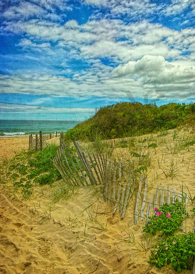 Fence in the Dunes|Fine Art Photography by Todd Breitling