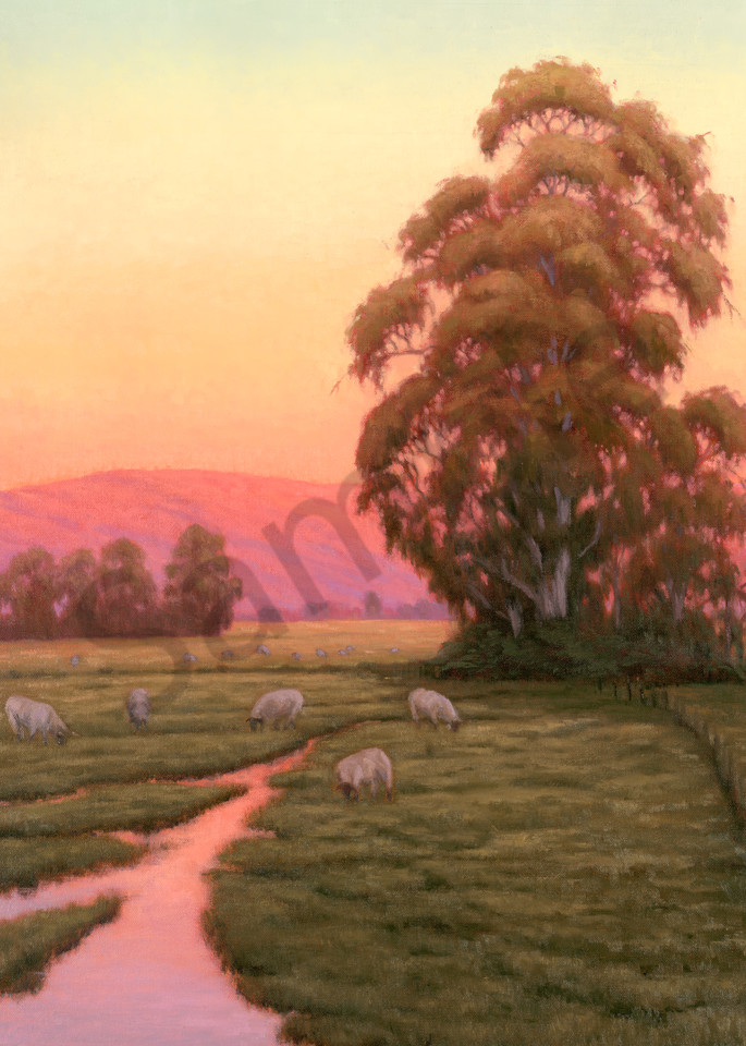 Sheep at Sunrise, Oil painting by Terry Sauve