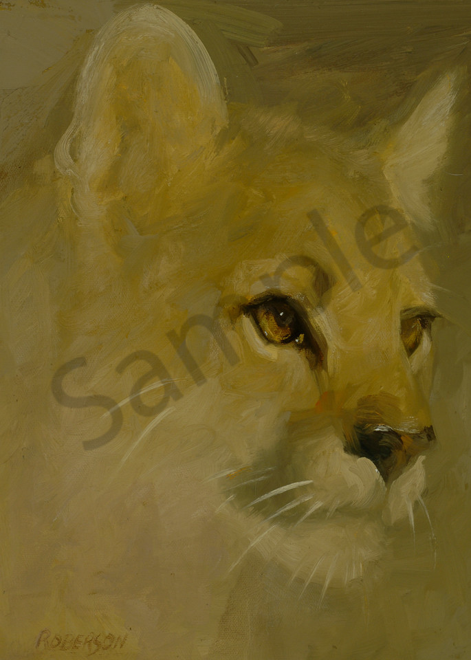 Whiskers Loves Animal Planet Art | Mary Roberson