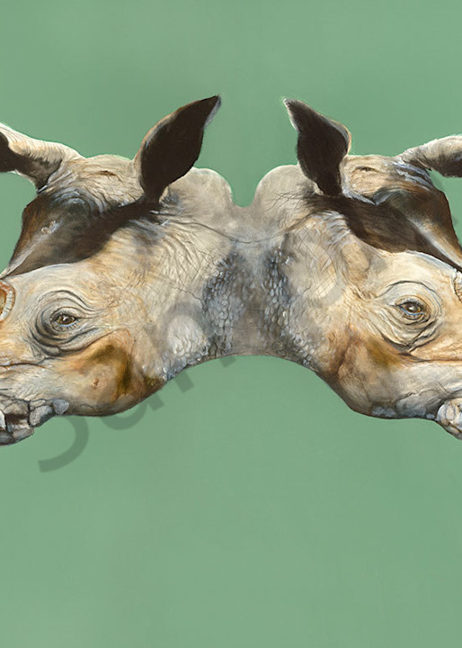 """White Rhino"" fine art print by Peter Koury."