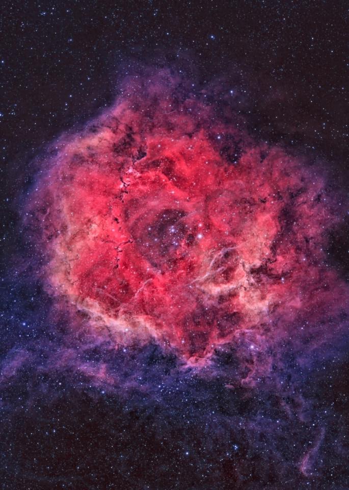 Rosette Nebula 1 Art | Dark Sky Images