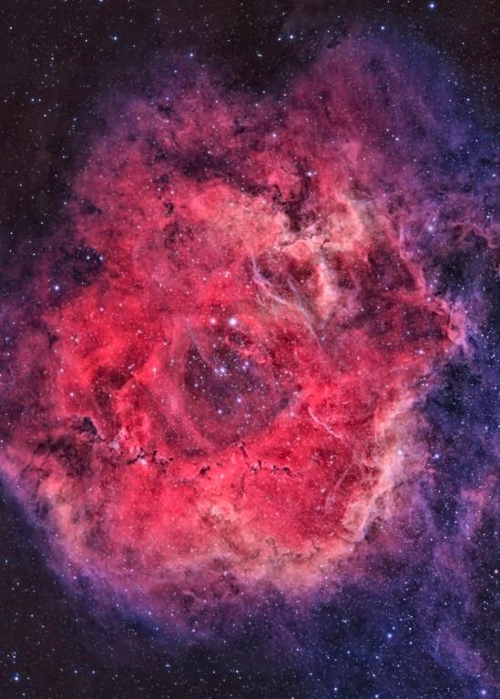 Rosette Nebula 2 Art | Dark Sky Images