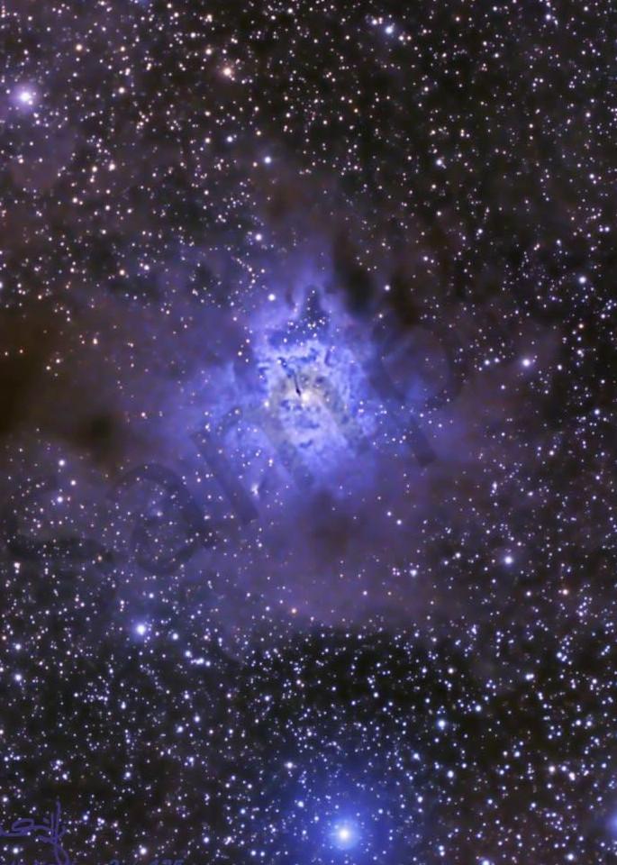 Iris Nebula Photography Art   Dark Sky Images