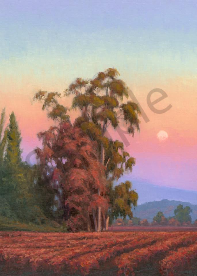 Autumn Moonrise Art | Terry Sauve Fine Art