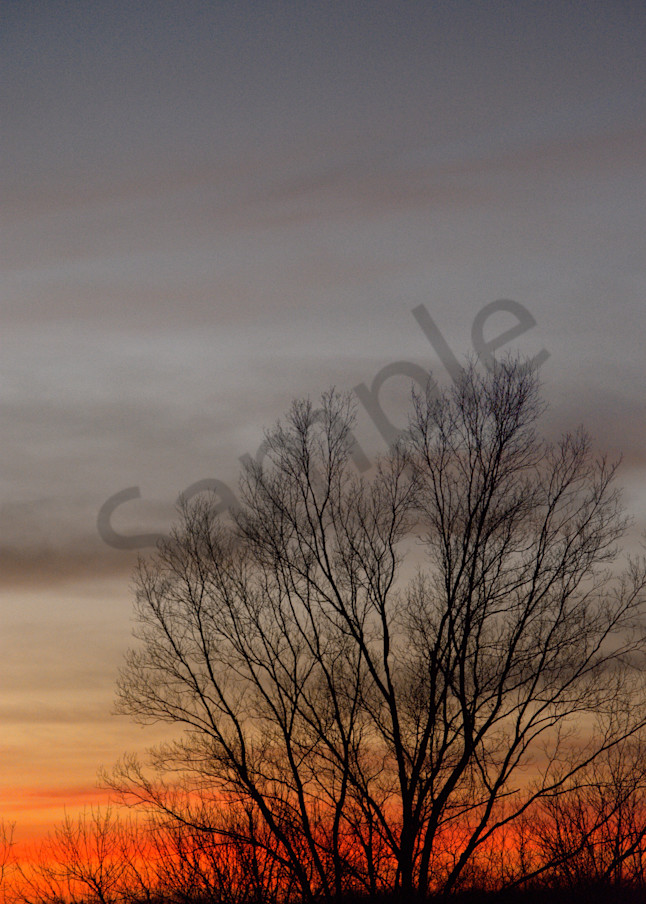 Sunset On The Farm Art | No Blink Pictures, LLC