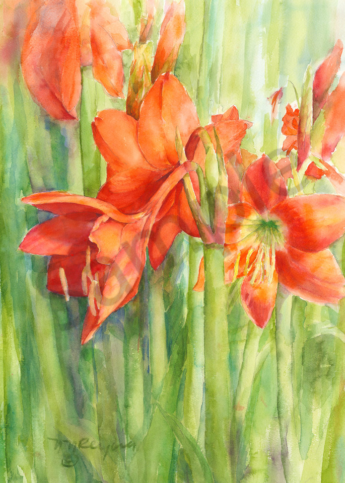 Bright Art   Nancy Reyna Fine Art