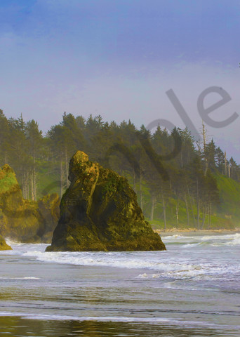 Pnw Ruby Beach Eagle 1 Photography Art | John Martell Photography