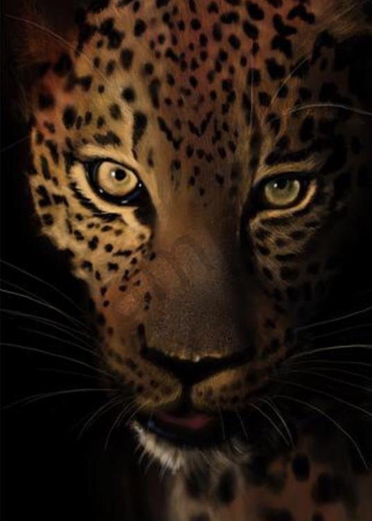 Kelly Bandalos / Mayan Jaguar