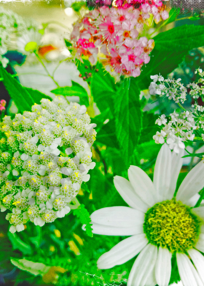 Summer Flower Bouquet|Fine Art Photography by Todd Breitling