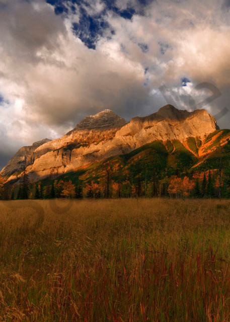 Fall puts the signature warm colors on  the Rockies.Canadian Rockies|Banff National Park|Rocky Mountains|