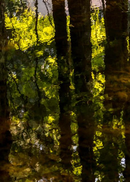 dark canal reflection