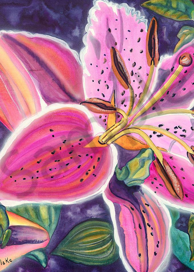 """""""Star Gazing Frogs"""" fine art print by Kelly Wolske."""