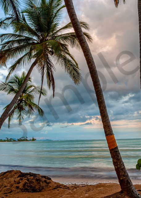 Art Print Humacao Nature Preserve Puerto Rico Ocean Breeze
