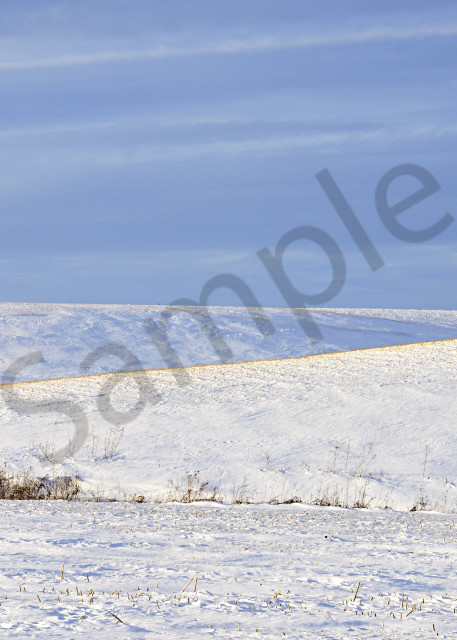 Winter Layers And Textures. Photography Art   LHR Images