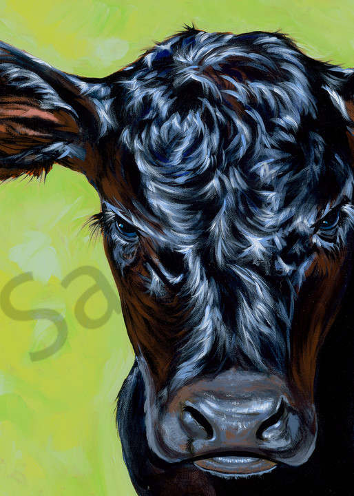 Calf and baby bull paintings by Texas artist, John R. Lowery, available as art prints.