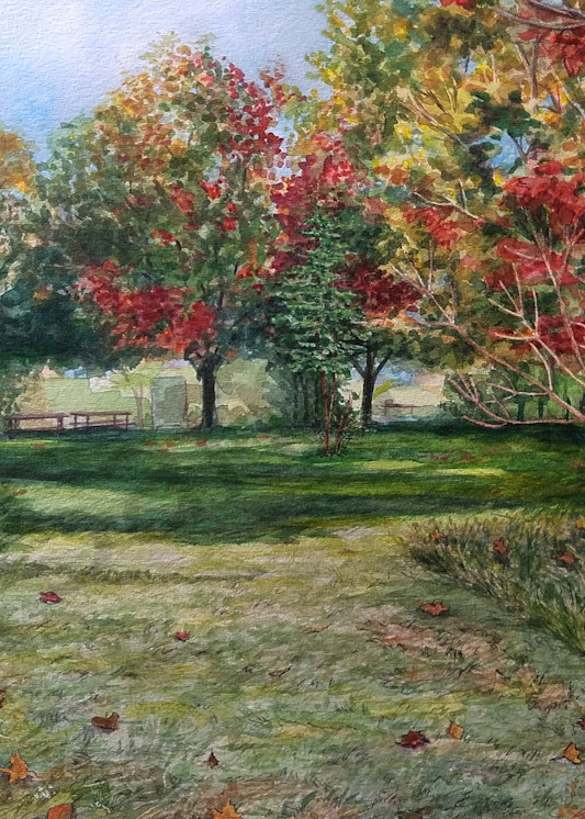 """""""From The Meadows Looking In"""" by Jennifer Sowders 