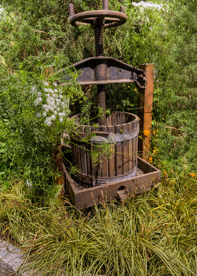 Photography By Festine antique press