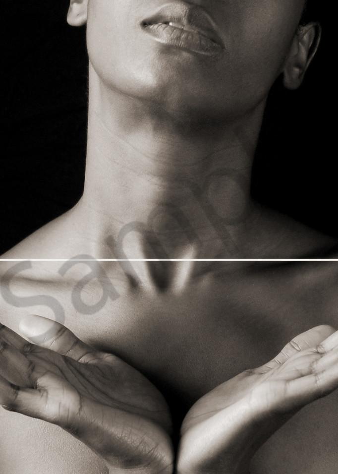 Anatomy Geometry Art   Cincy Artwork