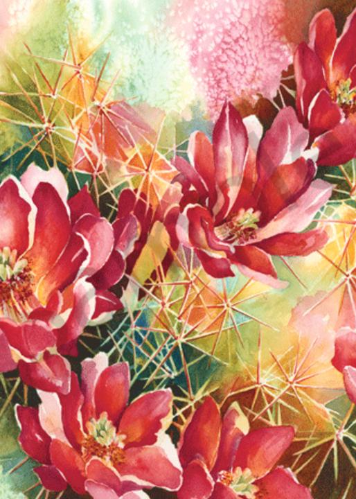 Scarlet Stunner fine art print by Karen Shanahan.