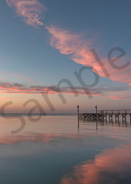 Think Pink Photography Art | Feather Flare Photography